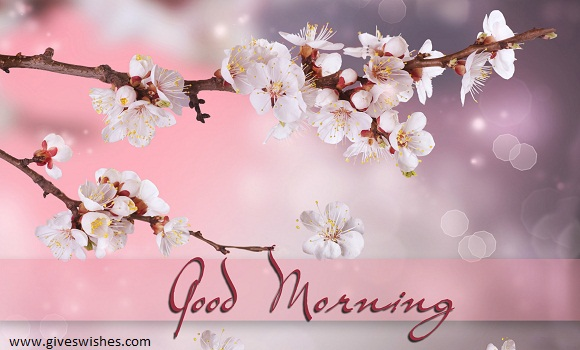 Best 35 Good Morning Message For Friends - Good Morning Quotes For Friends