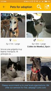 11pets Aplikasi Kucing di Android