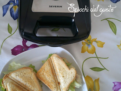 toast ripieni con tostiera severin