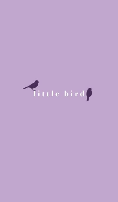 little bird-purple-