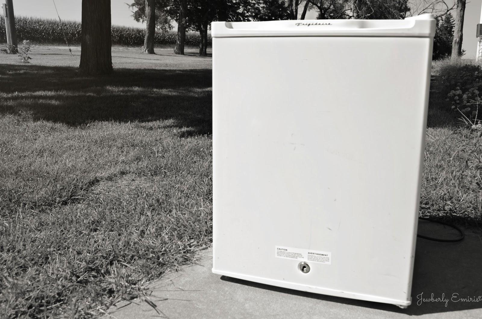 Jewberly emiris garage sale score frigidaire mini fridge for Garage mini 77