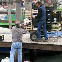 Arbeiten in Venedig, Photo by Gunther H.G. Geick