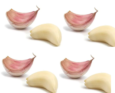 Garlic (lasun) Bone Health in Women