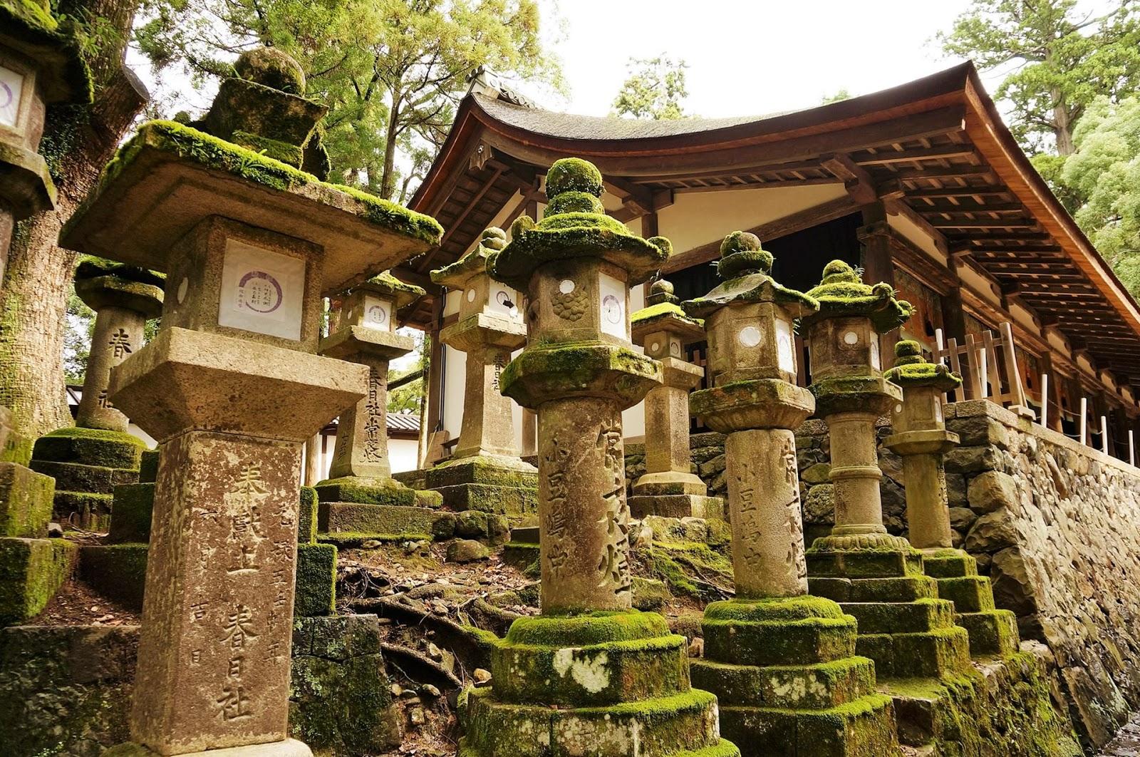 奈良-景點-推薦-市區-自由行-必玩-必遊-旅遊-觀光-日本-Nara-Tourist-Attraction