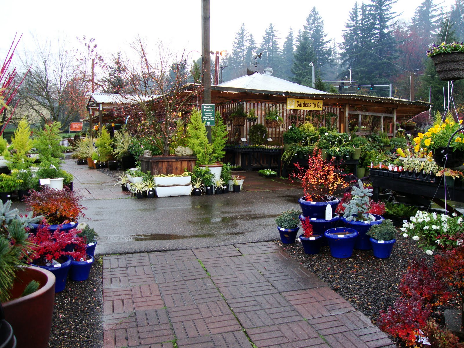 Cornell Farms A Nursery In Portland That I D Never Been To