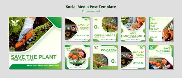 Environmental recycle and reuse social media post Free Psd