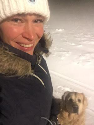 kultainen noutaja, uros, koira, talvi, lumi, tyttö, nainen, ulkoilu