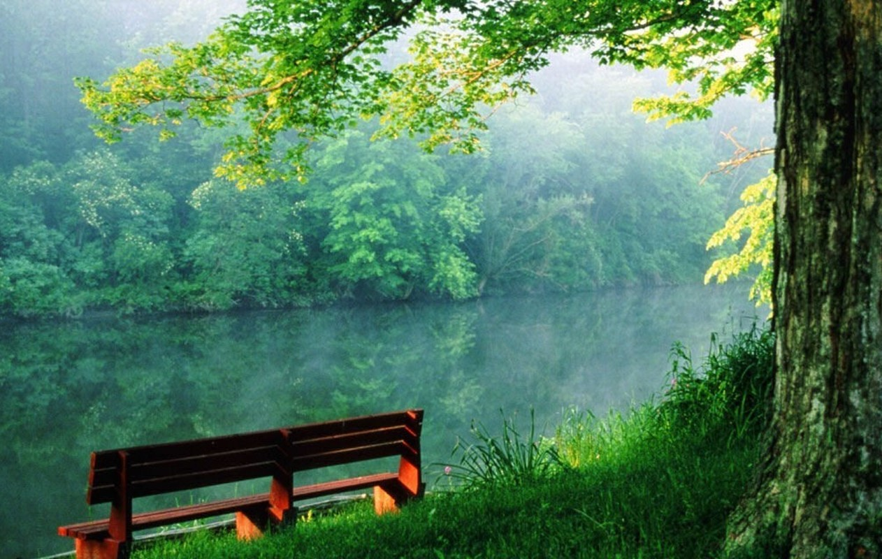 Beautiful nature wallpapers free download widescreen hd wallpapers.