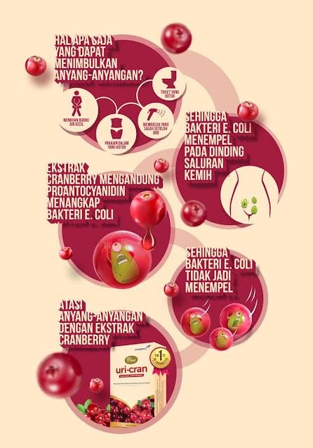 manfaat cranberry untuk anyang-anyangan