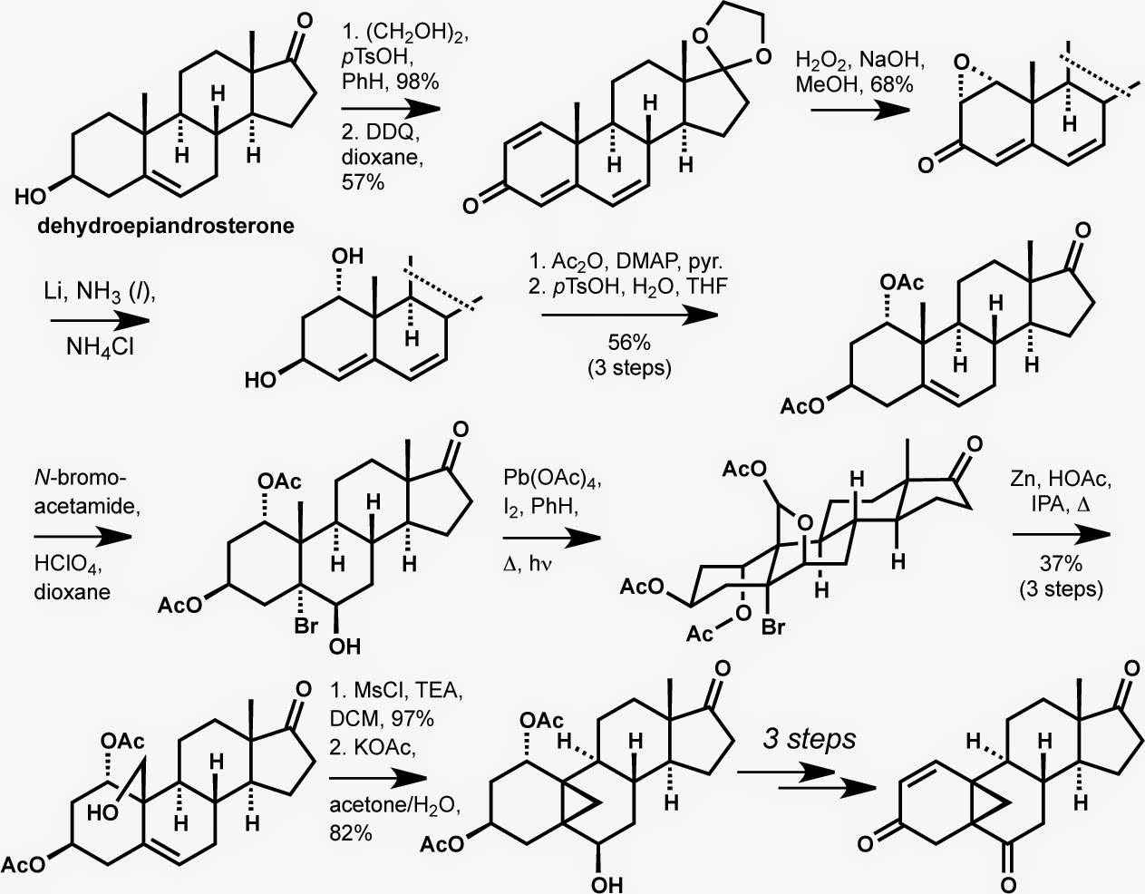 modern steroid science: Approaches to Synthesis of the