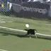 Η πιο θεαματική απόκρουση σε αγώνα ποδοσφαίρου έρχεται από έναν σκύλο (video)