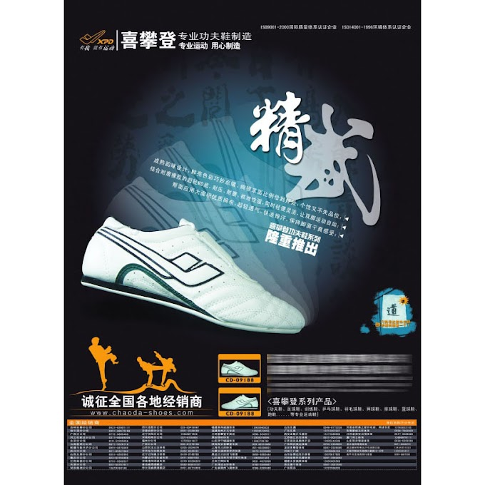 Professional Kung Fu Shoes PSD Promotion Poster free psd template