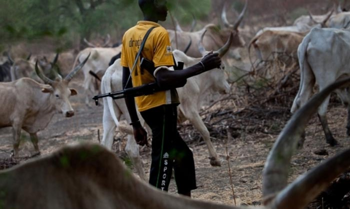 Government signs 6 months imprisonment for herdsmen in Ekiti State