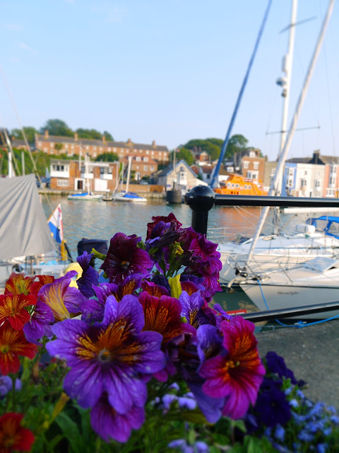 Flowers at the Harbourside in Weymouth