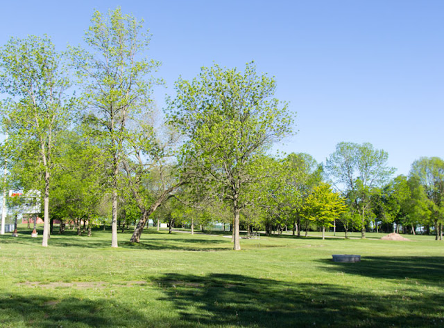 A field full of green space at Tudhope Park, Orillia