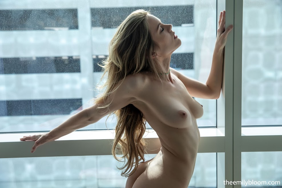 [TheEmilyBloom] Ora Young - Window Frame