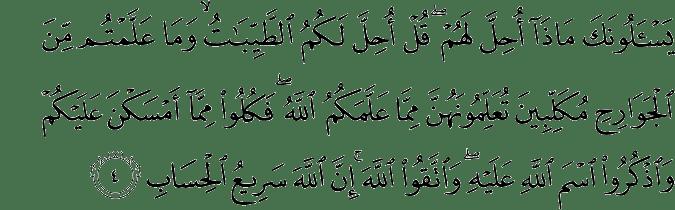 Surat Al-Maidah Ayat 4