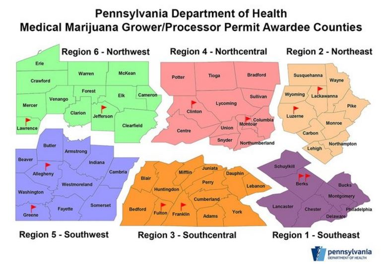 the importance of medical marijuana Medical marijuana organizations will navigate a regulatory maze of a highly regulated product, while managing more traditional problems facing new businesses.