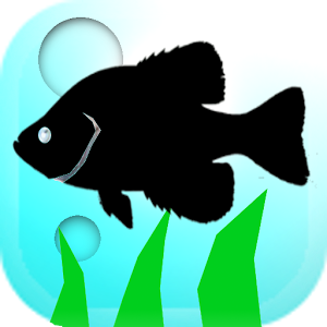 Android Game : Mancing Mania
