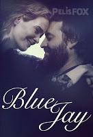Arrendajo Azul (Blue Jay) (2016)