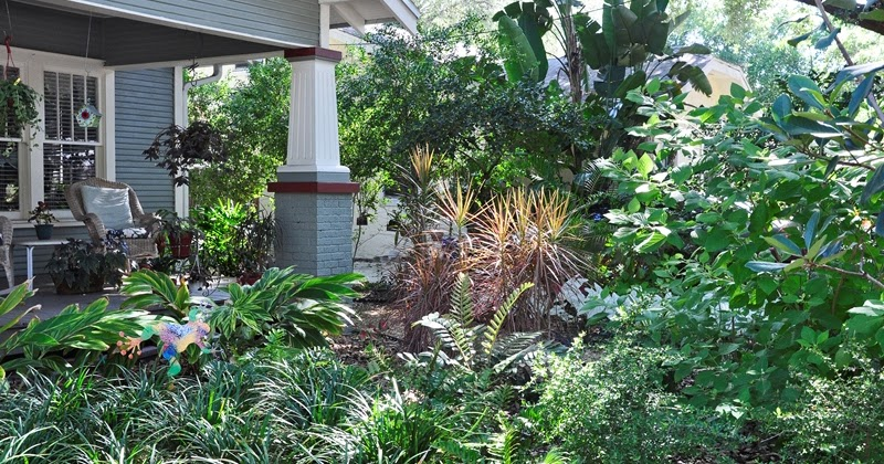 Bay-Friendly Landscaping: Made In The Shade