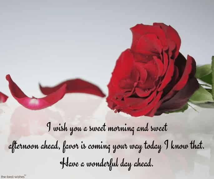 have a wonderful day letter with red rose