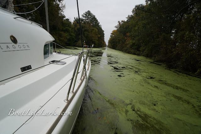 Lagoon 380 Sailing Catamaran drives through the Dismal Swamp Canal