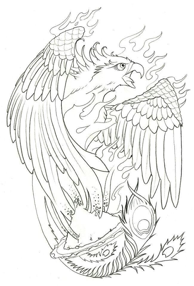 Harry Potter Phoenix Bird Fire