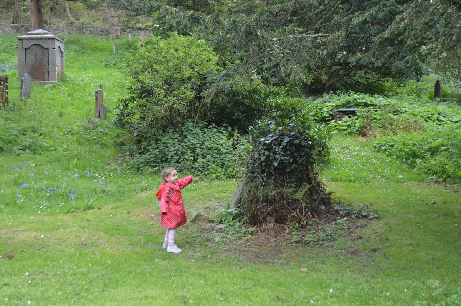 , A Wonderful Walk at Monk Haven, Pembrokeshire, #Countrykids