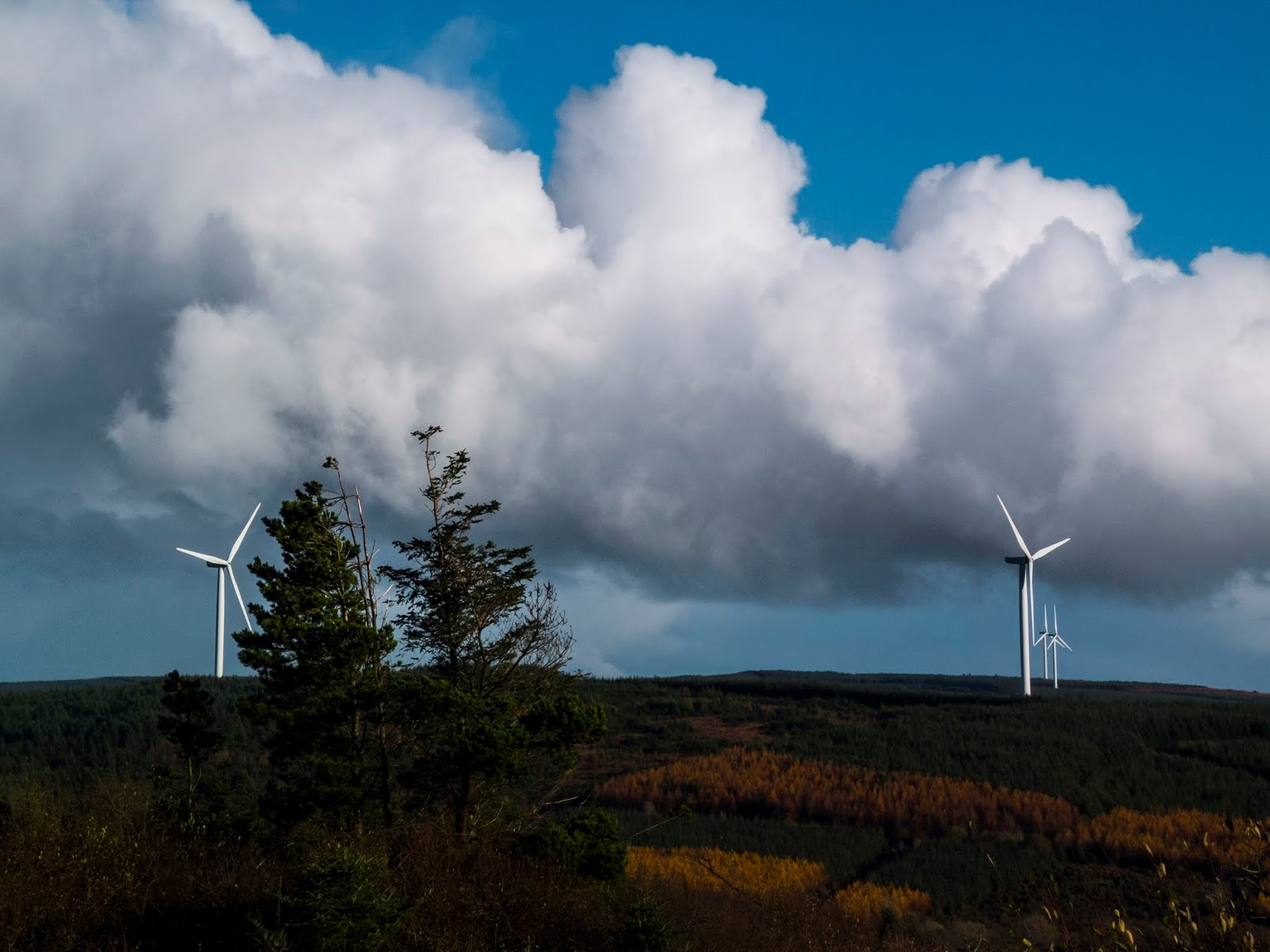 Big fluffy clouds in the Boggeragh Mountains in North Cork.