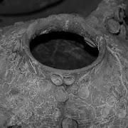 В Иерусалиме ученые нашли амфору среднего бронзового века с обезглавленными лягушками