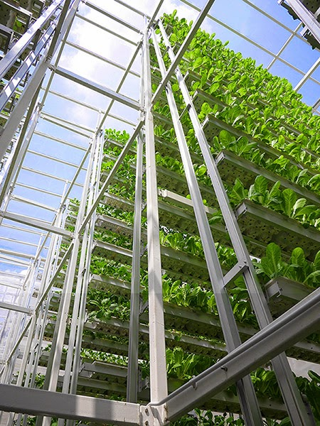 02-Sky-Greens-Vertical-Farms-for-a-new-Agricultural-Revolution-www-designstack-co