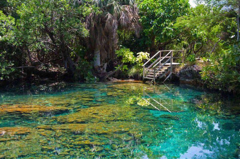 Repubblica Dominicana, destinazione imperdibile per gli amanti del Turismo Ecosostenibile | Caraibi