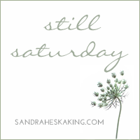 http://sandraheskaking.com/2015/06/still-saturday-when-you-are-wound-weary/