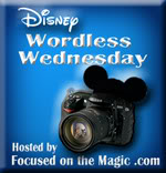 The Disney Wordless Wednesday Blog Hop