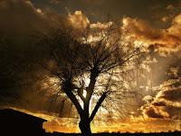 https://pixabay.com/es/sun-lago-ajuste-puesta-del-sol-75967/