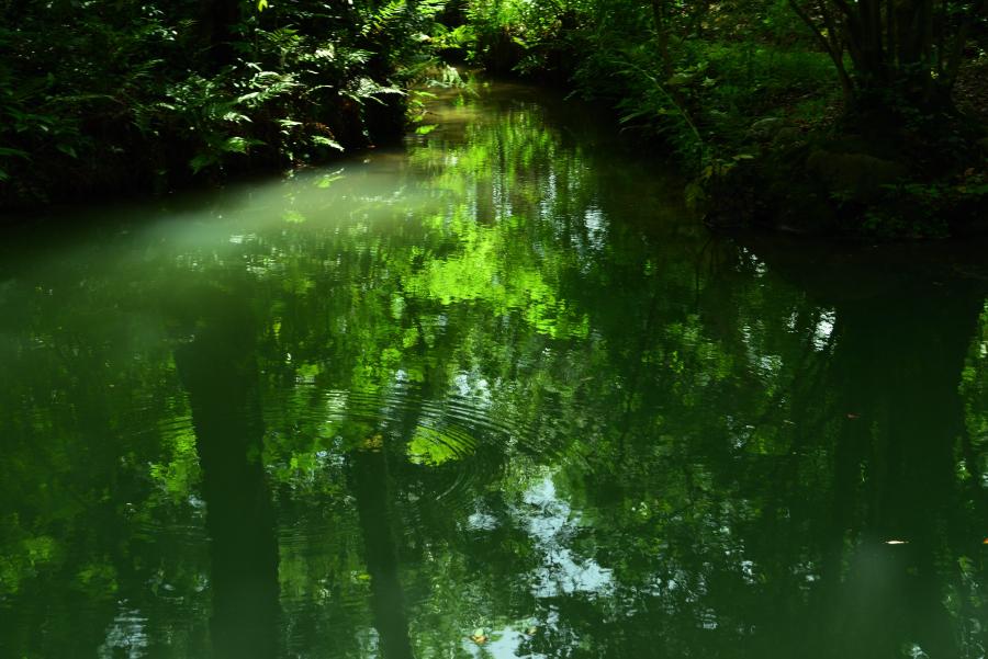 兼六園の沈砂池
