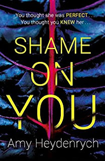 Shame on You book cover.