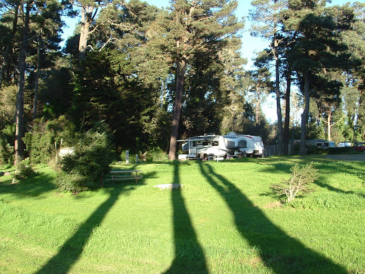 Hidden Pines RV Park and Campground - Fort Bragg - California - October Update