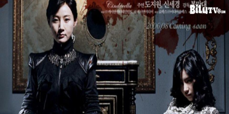 Phim Gương Mặt Giả VietSub SD | Cinderella 2006