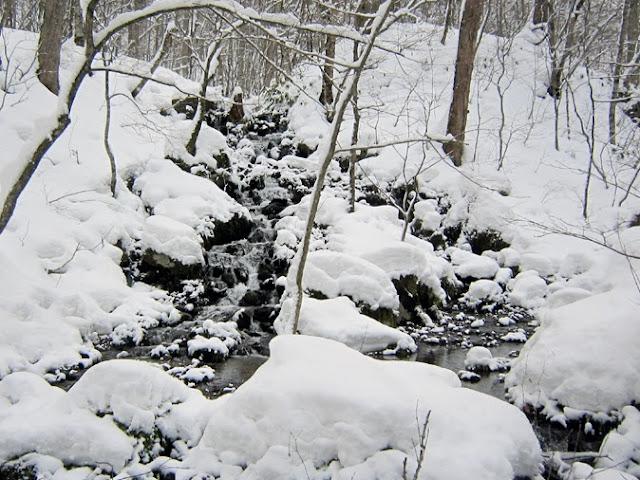 雪の奥入瀬渓流