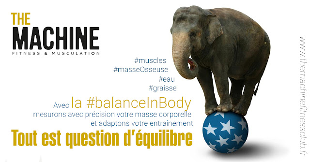 The Machine Fitness club - Balance InBody