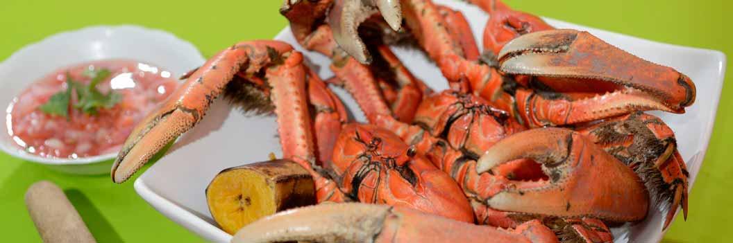 Gastronomía Huecas de Guayaquil - Ochipinti