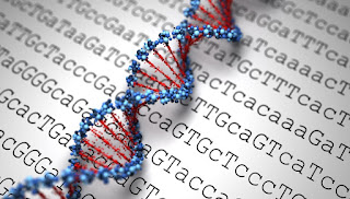 Matches Mesothelioma Treatments to Genetic Profile (UK Study)