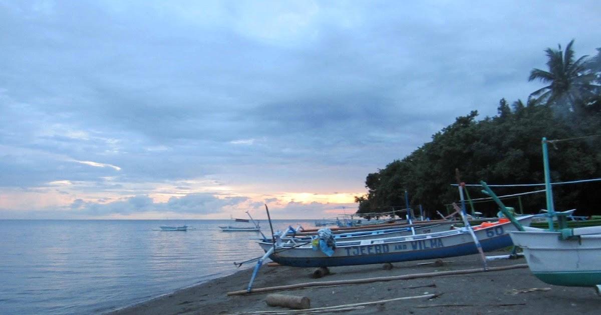 dolphin+pics+hunting%252C+lovina+bay%252C+bali%252C+indonesia%252C+180413+%252813%2529 Kuta Bali