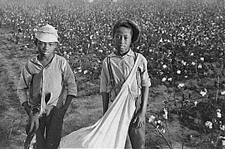 Young Cotton Pickers - Library of Congress