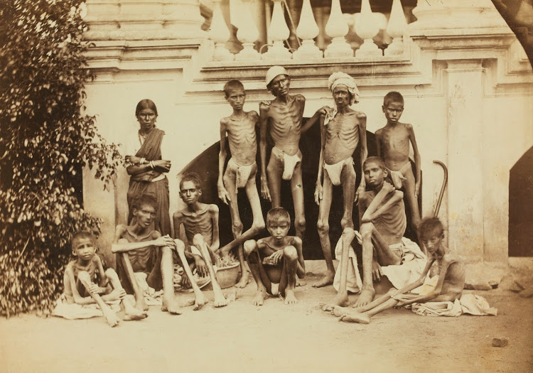 The Great Famine of 1876–78 in Southern India