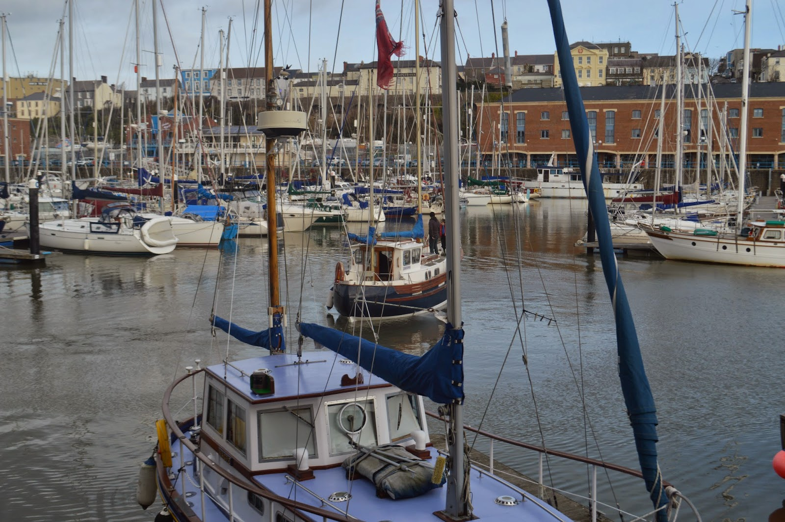 , Danny goes to Sea: East Llanion to Milford Haven