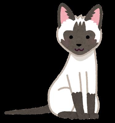 シャムのイラスト(猫)