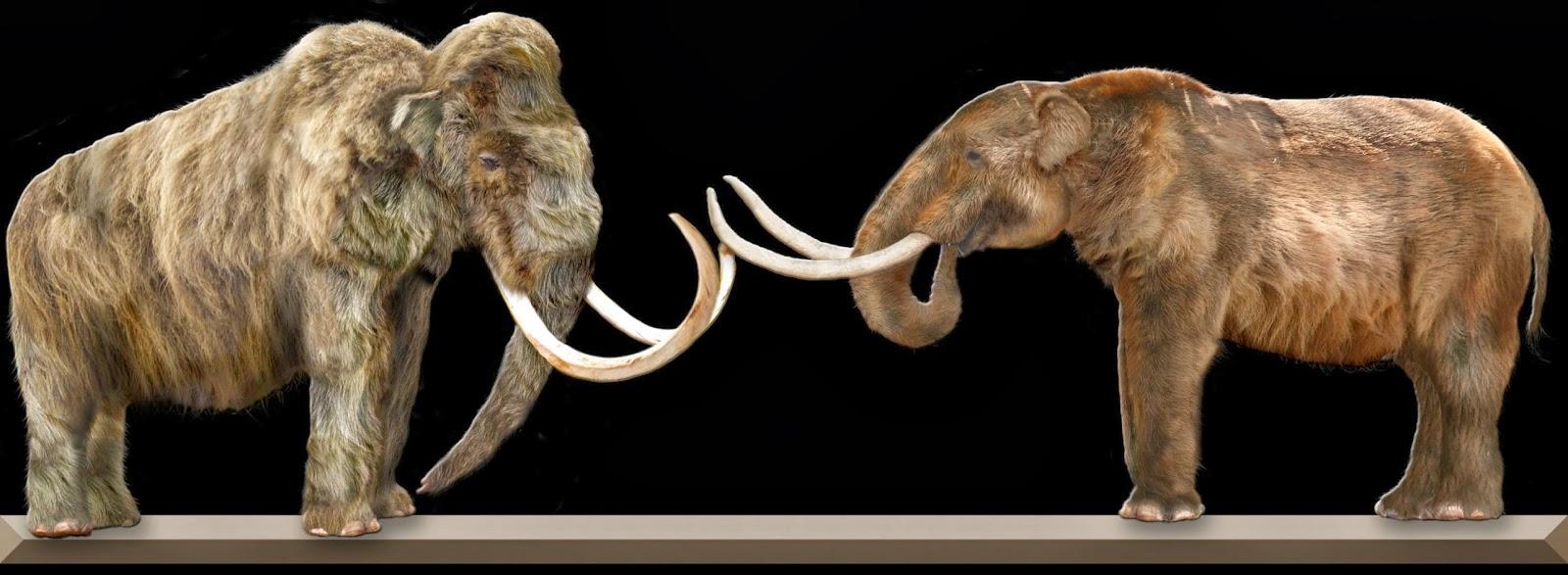 Mastodonten